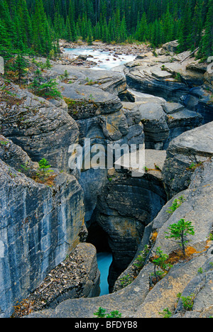 Mistaya Canyon, Icefields Parkway, Banff National Park, Alberta, Canada - Stock Photo