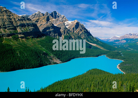 High angle view of Peyto Lake, Icefields Parkway, Banff National Park, Alberta, Canada - Stock Photo