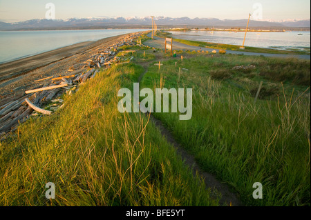 Tall grass and trail along Goose Spit, a popular destination in Comox, Comox Valley, Vancouver Island, British Columbia, - Stock Photo