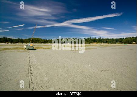 Low tide on Tribune Bay, Hornby Island, Gulf Islands, British Columbia, Canada - Stock Photo