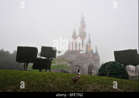 magic, kingdom, castle, Disneyland in the myst - Stock Photo