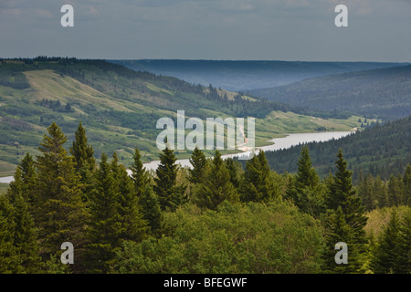 Overview of Cypress Hills Interprovincial Park and Reesor Lake seen from the Reesor Lake Viewpoint, Alberta, Canada - Stock Photo