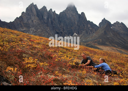 Young couple berry picking in the Tombstone Valley with Tombstone Mountain in background, Yukon, Canada - Stock Photo