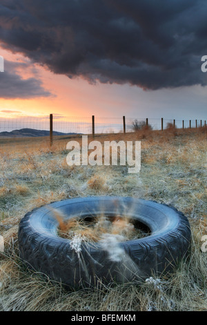 Tire left in ditch along a country road near Cochrane, Alberta, Canada - Stock Photo