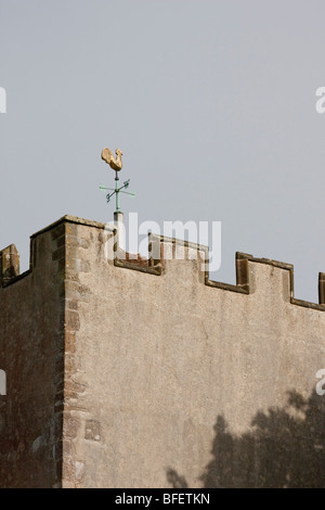 Golden cockerel weather vane on top of a church in West Sussex - Stock Photo