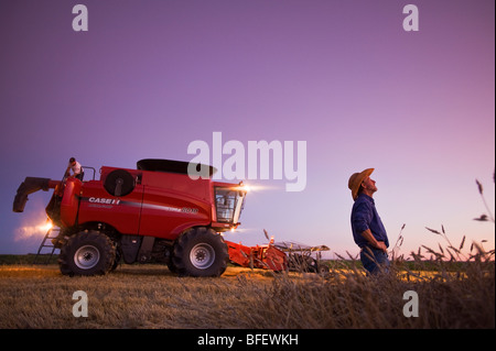 A farmer with his combine harvester in background takes a break at dusk during spring wheat harvest near Dugald - Stock Photo
