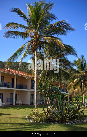 Caribbean resort buildings, palm trees and agave in the forefront - Stock Photo