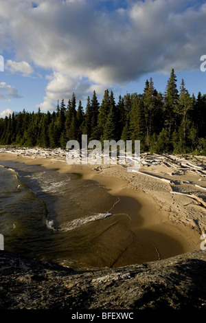 Driftwood littered sand beaches and boreal forest along the shores of Lake Superior in Pukaskwa National Park, Ontario, - Stock Photo