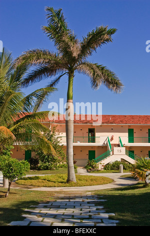 Caribbean resort buildings, palm trees in the forefront - Stock Photo