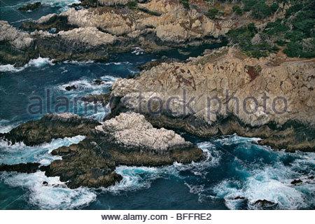 Rocky coastline (aerial), Point Lobos State Reserve, Big Sur, California - Stock Photo