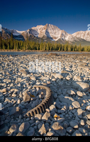 Trash left on the bank of the Athabasca River with Mount Fryatt in the distance, Jasper National Park, Alberta, - Stock Photo