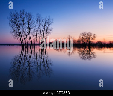 Trees are reflected in spring flood waters laying on the fields of rural Grand Bend, Ontario, Canada - Stock Photo