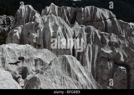 Sjeverni Velebit National Park - Stock Photo