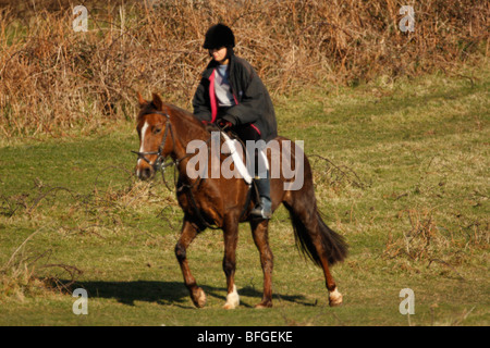 Young Woman Riding a Brown Horse in the British countryside - Stock Photo