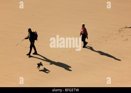 Two People and a Dog Walking Along a Sandy Beach, viewed from above - Stock Photo