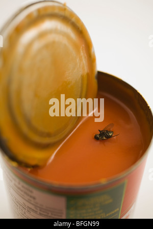 Close-up of dead housefly floating in can of tomato soup - Stock Photo