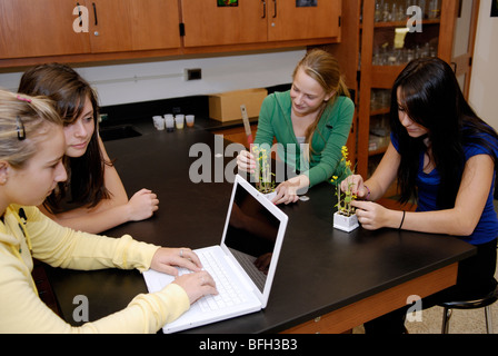High school students in biology class measuring plants for an experiment and entering data into a laptop - Stock Photo