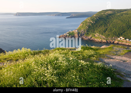 View from Signal Hill, National Historic Site. St. John's, Newfoundland, Canada - Stock Photo