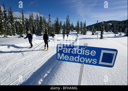 Cross Country, Paradise Meadows near the Mt. Washington ski resort, Vancouver Island, British Columbia, Canada. - Stock Photo
