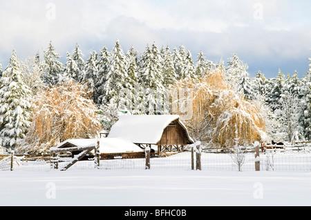 A rural farmhouse in winter, Central Saanich near Victoria, BC. - Stock Photo