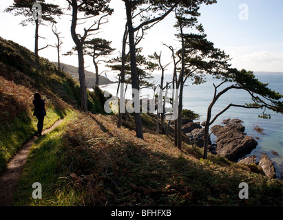 A woman walking along a cliff path on the Roseland Peninsula in Cornwall - Stock Photo