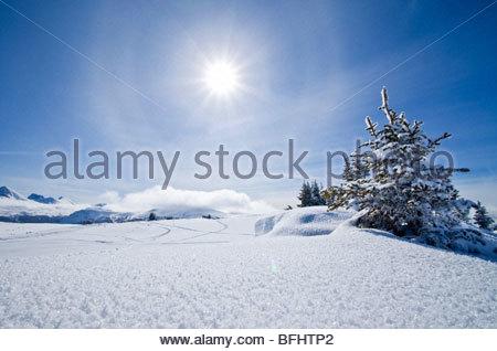 Winter Landscape at Sunshine Village Ski Resort, Alberta - Stock Photo