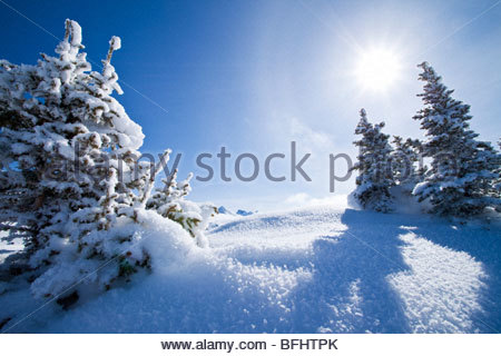 Winter Landscape at Sunshine Village Ski Resort, Alberta - Stock Photo