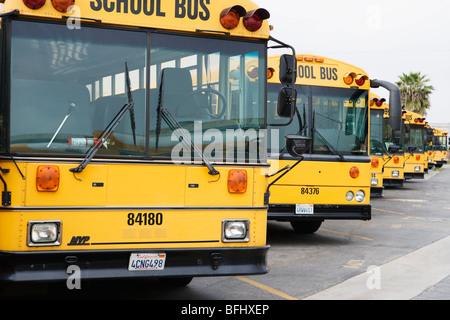 School Busses Parked in Parking Lot - Stock Photo