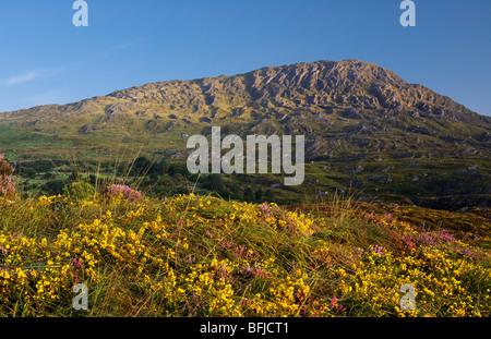 Sugarloaf Mountain, near Glengarriff, Beara, West Cork, Ireland - Stock Photo