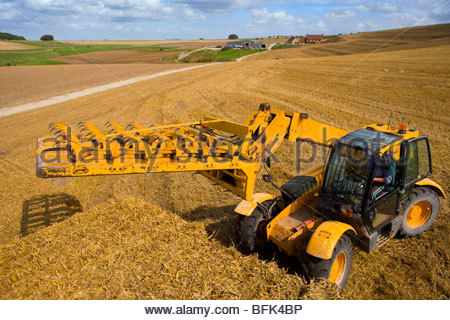 Tractor stacking straw bales on trailer in sunny rural field - Stock Photo