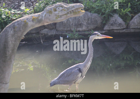 A Heron fishing next to the Victorian dinosaurs in Crystal Palace Park - Stock Photo