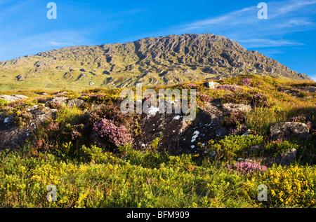 Sugarloaf Mountain, Beara, West Cork, Ireland - Stock Photo