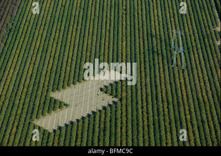 aerial view above powerlines across Central Valley California farmland - Stock Photo
