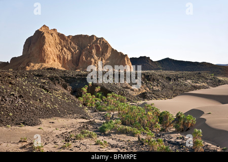 A crumbling extinct volcano, known as Aruba Rock, is surrounded by outflows of black lava rock on the edge of the - Stock Photo