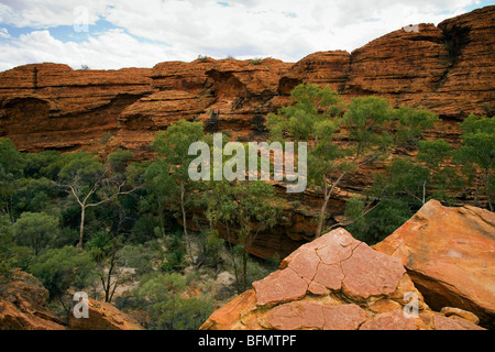 Australia, Northern Territory, Watarrka (Kings Canyon) National Park. The Garden of Eden - a natural pool in Kings - Stock Photo