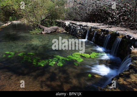 Israel, Golan Heights Flowing water in the Hermon River (Banias river) - Stock Photo