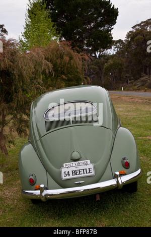 1954 Volkswagen Beetle, Western Australia - Stock Photo