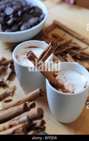 Food Drink, Hot cocoa with marshmallow on top made from scratch- with cinnamon sticks too - Stock Photo