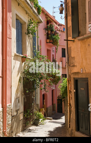 The old town, Moure, Collioure, Pyrenees Orientals France - Stock Photo