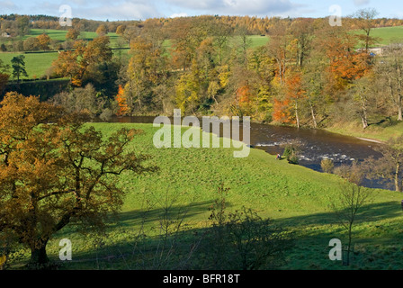 The river Wharfe at Bolton Abbey - Stock Photo