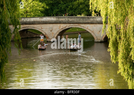 Punting on the River Cam in Cambridge on a warm summer's evening with Clare bridge in the background. - Stock Photo