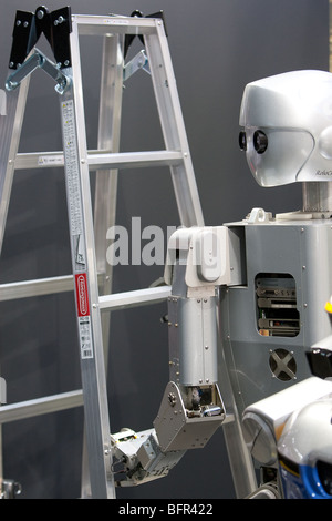 Humanoid robots, produced by Kawada, on display at the International Robot Exhibition 2009, in Tokyo, Japan - Stock Photo
