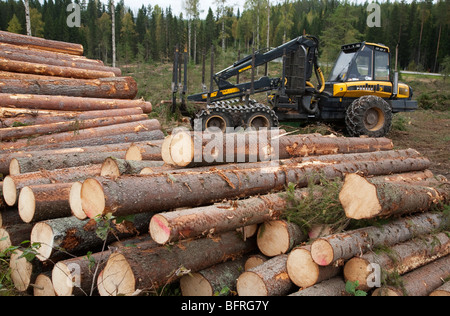 Pile of pine ( pinus sylvestris ) and spruce ( picea abies ) logs and Finnish Ponsse Elk forwarder , Finland - Stock Photo