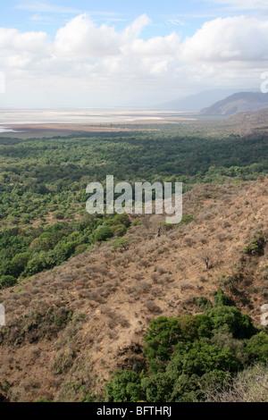 View Over The Great Rift Valley At Lake Manyara NP, Tanzania - Stock Photo