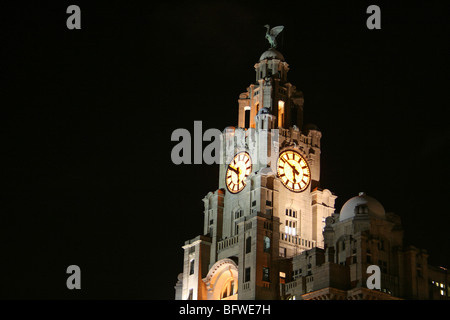 Clock Tower And Liver Birds At Night The Royal Liver Building, Liverpool, Merseyside, UK - Stock Photo