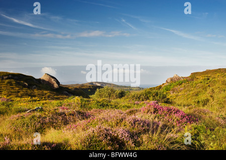 View towards Sheep's Head and Atlantic Ocean from lower slopes of Sugarloaf Mountain, Beara, West Cork, Ireland - Stock Photo