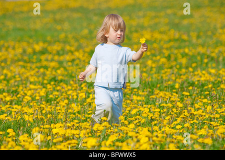 boy with long blond hair holding dandelion standing in a field - Stock Photo