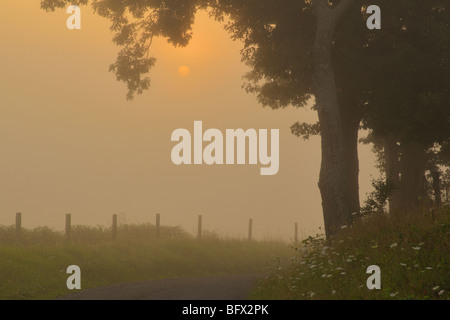 Sunrise in Swoope, Shenandoah Valley, Virginia - Stock Photo