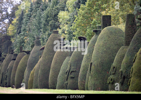 The Yew Tree Avenue at Clipsham,Rutland a collection off 150 clipped yew trees over 200 years old - Stock Photo