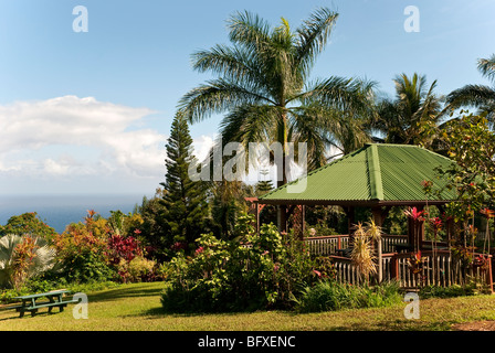 Pacific Ocean view from the Garden of Eden on the Road to Hana, Maui Hawaii - Stock Photo
